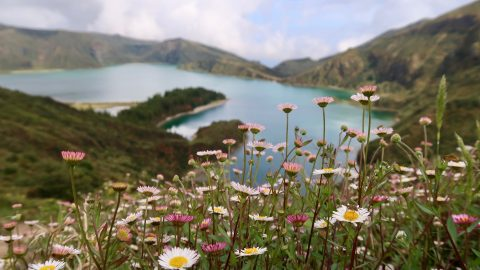 interesting facts about Azores