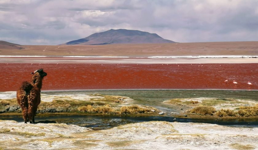 23 Brilliant Facts About Bolivia Facts