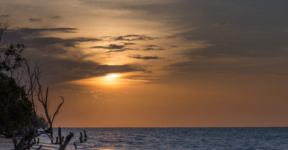 interesting facts about Paramaribo