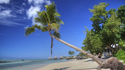 interesting facts about Samoa