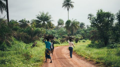 interesting facts about Sierra Leone