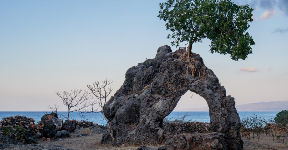 interesting facts about Timor Leste