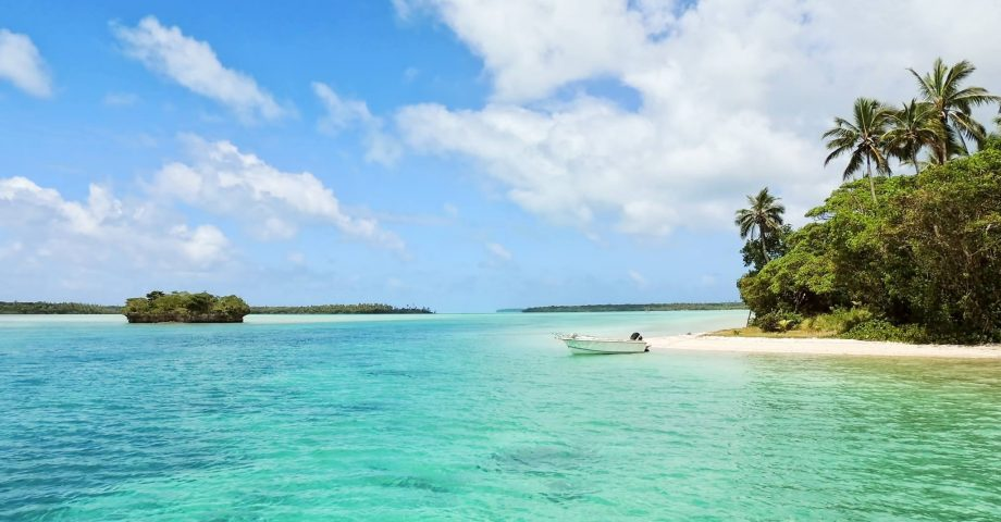 interesting facts about new caledonia