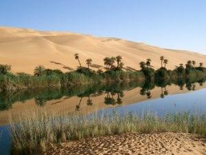 Oasis in the desert, Libya
