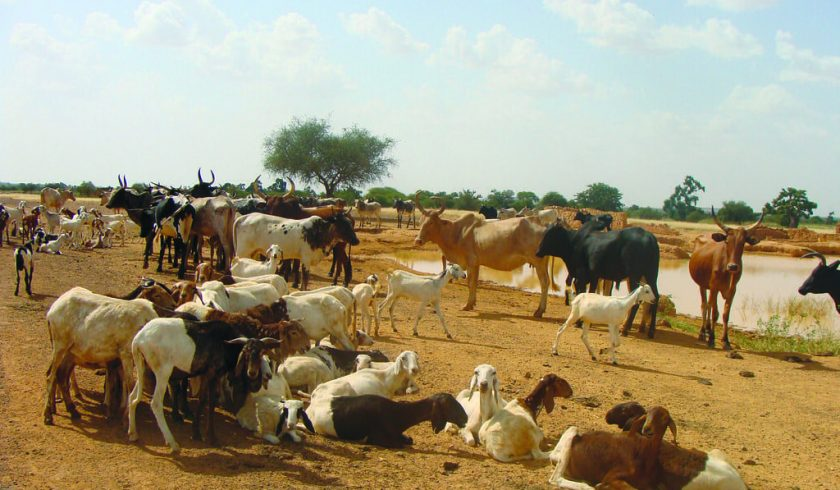 Interesting facts about Burkina Faso