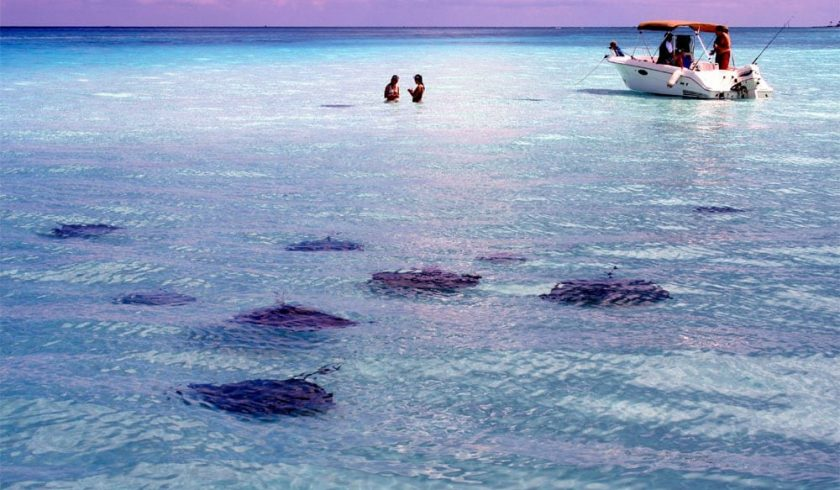 interesting facts about Cayman Islands