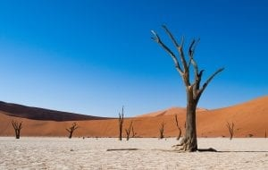 interesting facts about Namibia