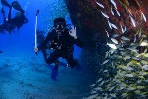 Fun Scuba Diving Facts