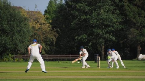 interesting facts about Cricket
