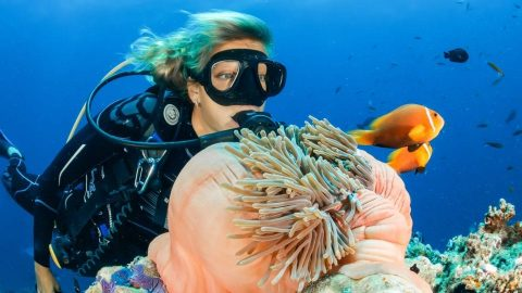 interesting facts about SCUBA diving