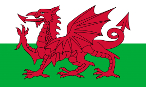 The Welsh Flag - The Red Dragon