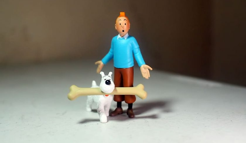 facts about tintin