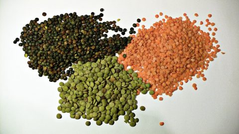 interesting facts about lentils