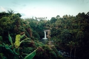 Waterfall in the Amazon Rainforest