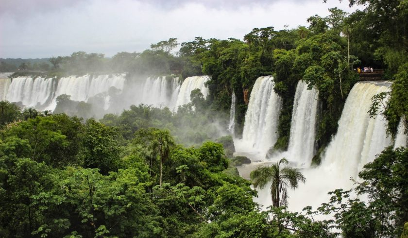 Facts about Amazon Rainforest