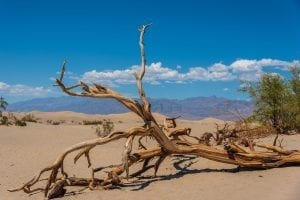 Interesting Facts about Death Valley