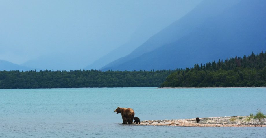 interesting facts about Alaska