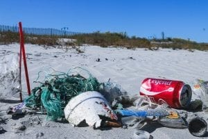 beach pollution facts