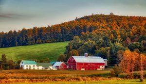 Dairy Farm in New Hampshire
