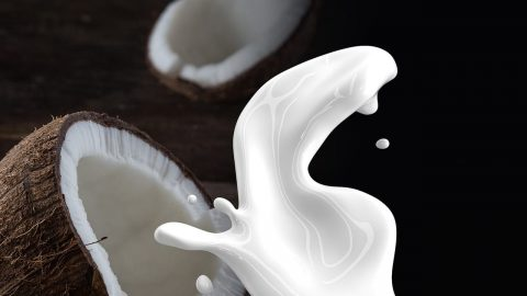 facts about coconut milk