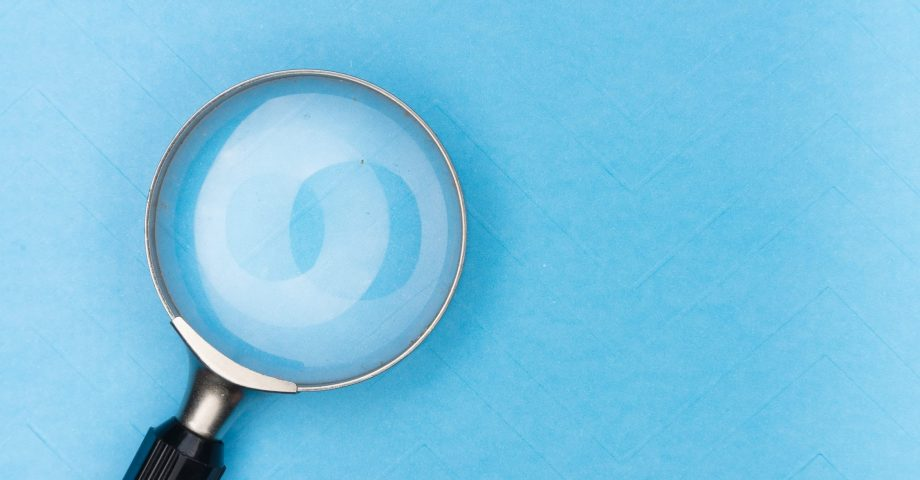 facts about search engine optimisation