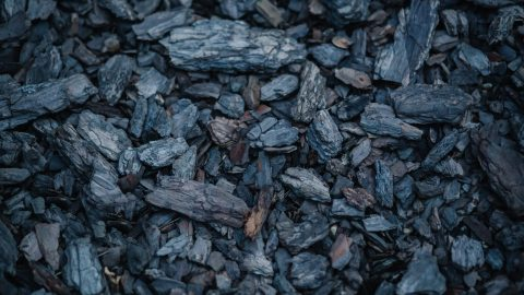 interesting facts about carbon