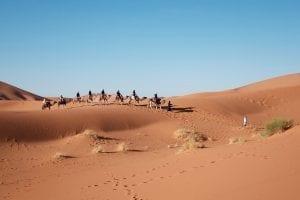 Fun Facts about The Sahara Desert