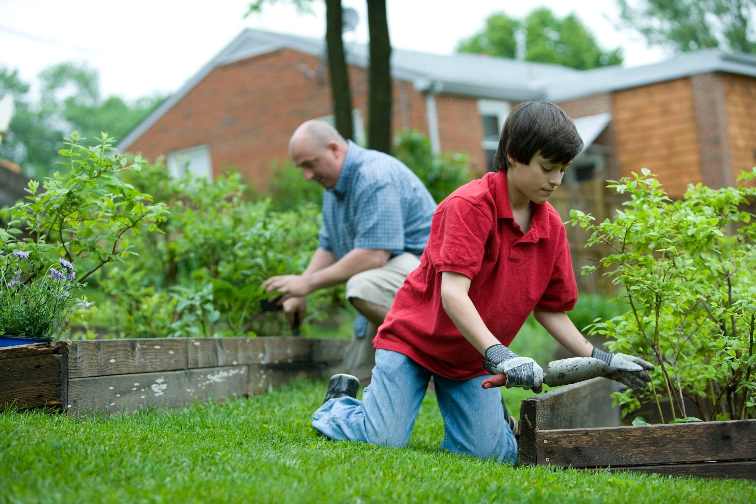 expert gardening advice