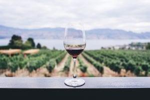 wine fun facts