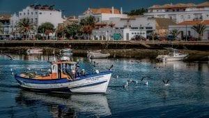 Algarve Facts