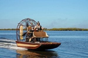 Fun facts about the Everglades