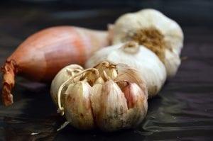 Garlic Facts