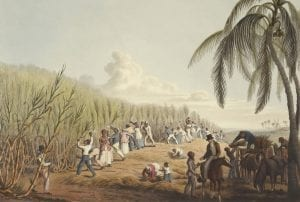 interesting facts about Slaves in Caribbean