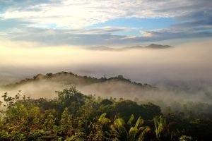 Fun Borneo Facts