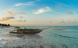 facts about Zanzibar