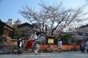 fun facts Kyoto