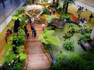 fun facts about singapore airport