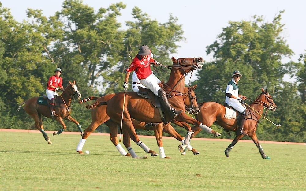 Facts about Polo