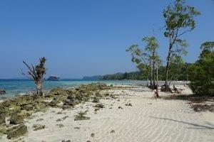Fun facts about Andaman and Nicobar Islands