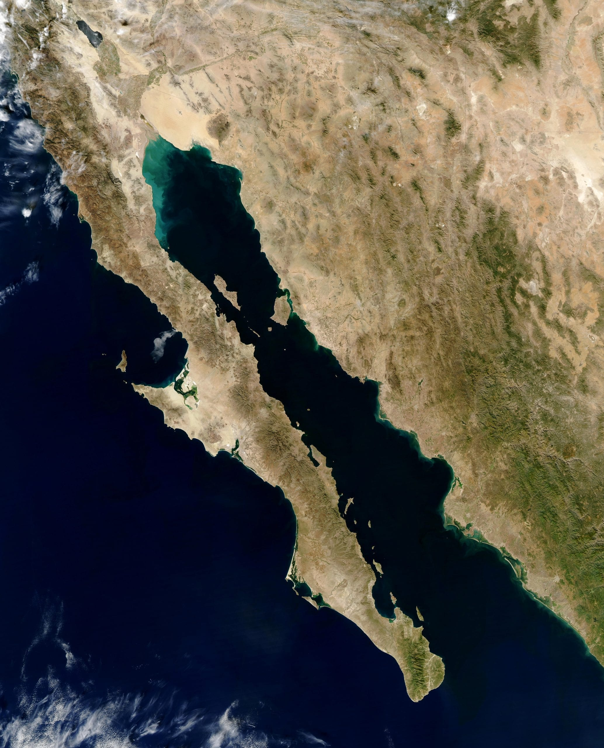 facts about the gulf of california