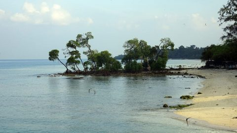 fun facts about andaman islands