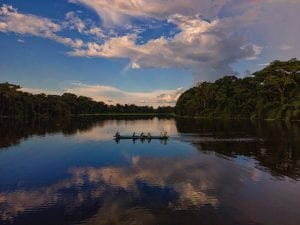 fun facts about the amazon rainforest