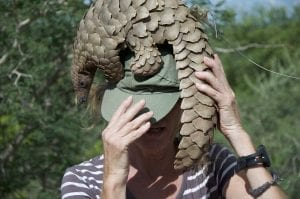 facts about pangolin