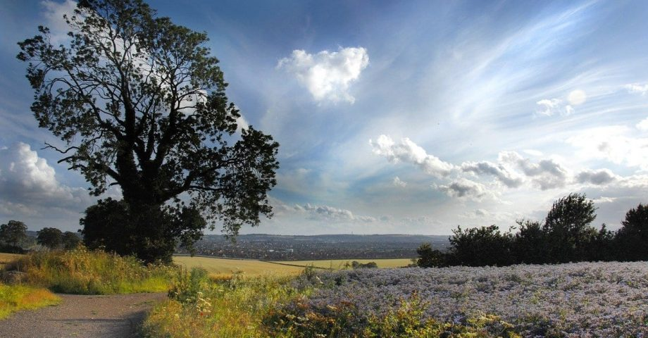 interesting facts about bedfordshire