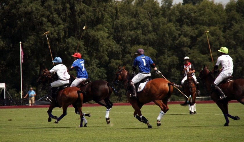 fun facts about polo