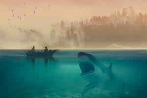 white shark 4454518 1280