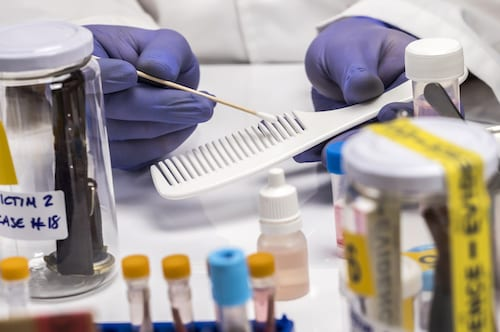 Specialized police take DNA sample from comb