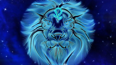 Fun Facts about the Leo Star Sign
